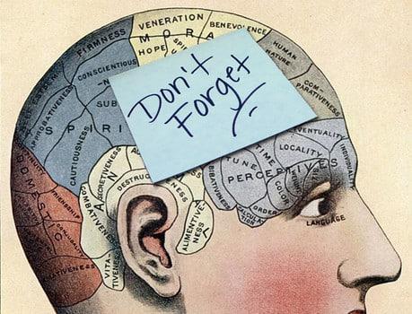 cervello-suddivisione-aree-memoria